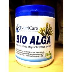 Bio Alga ascophillum nodosum